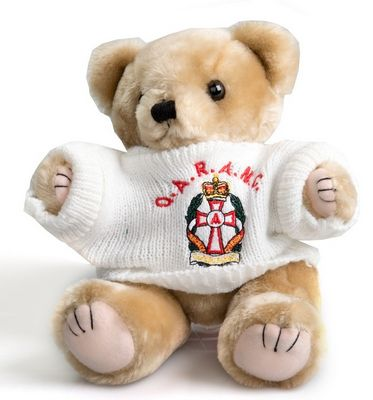 qaranc teddy bear wearing jumper