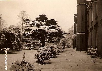 trees covered snow first world war hospital